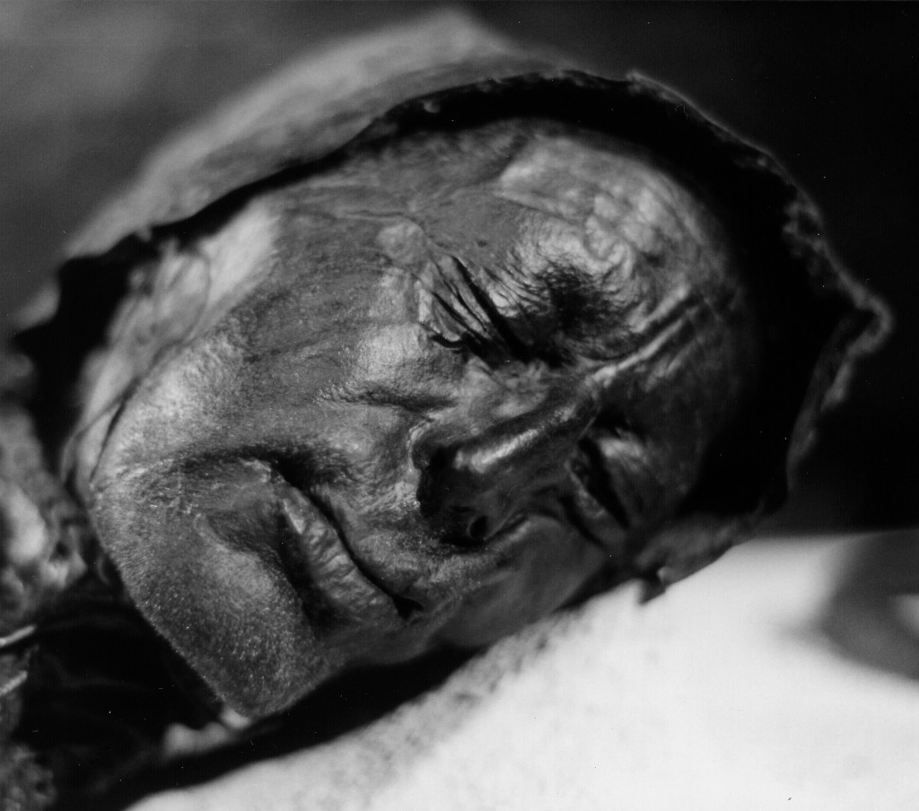 The well preserved face of the over 2000 year old Tollund Man.